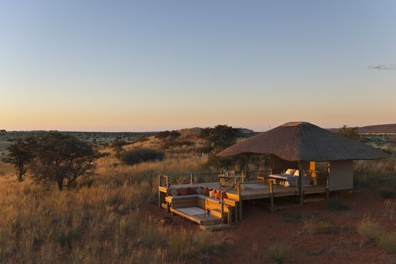 Tswalu Game Reserve. Southern Kalahari. Northern Cape. South Africa.
